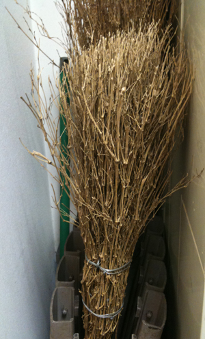 Broom of Twigs