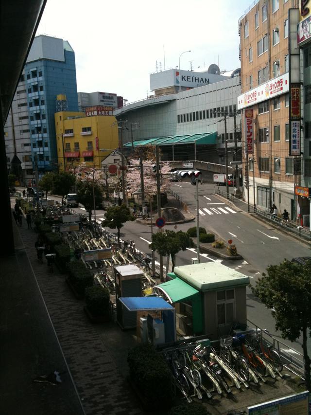 Kyobashi Station in Bloom