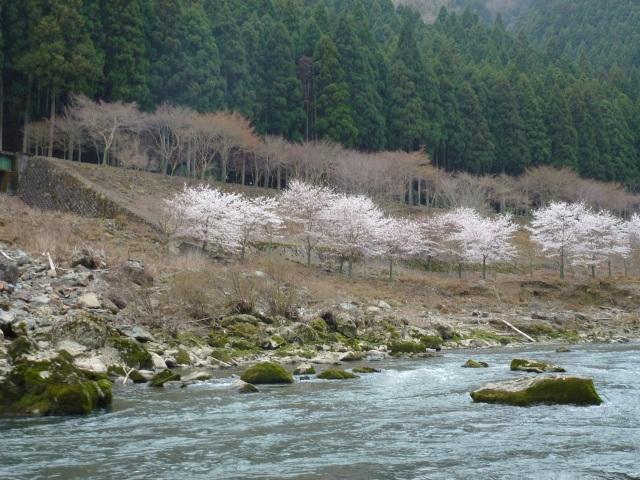 hozukudari_04
